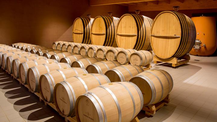 Wine & Heritage in Rueda y Toro