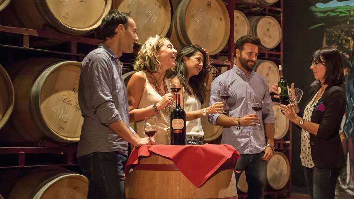Spain Through its Wineries
