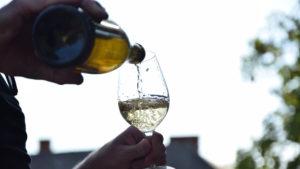 fermentacion-vino