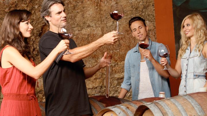 Fases para catar un vino