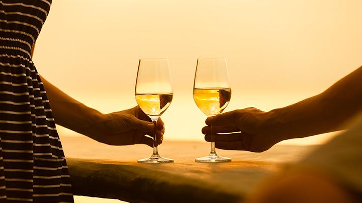 Spain Through its Wineries cruza fronteras